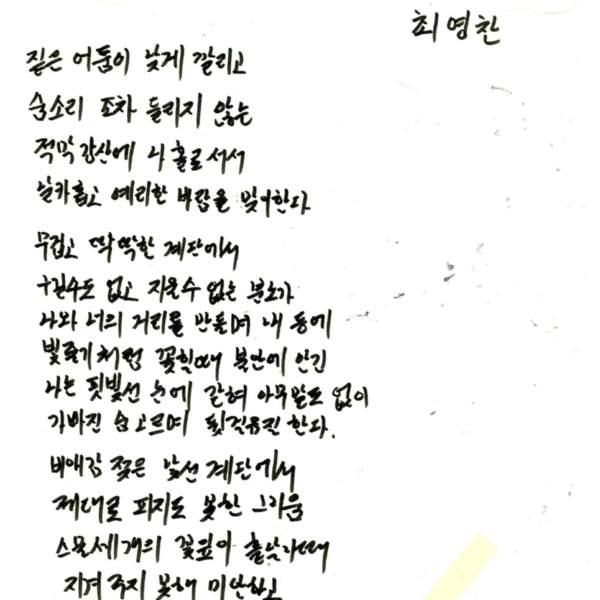 강남역 추모메세지 서울시민청 #370